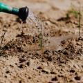 Plano de recuperação de áreas degradadas prad