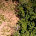 Projeto de regularização ambiental