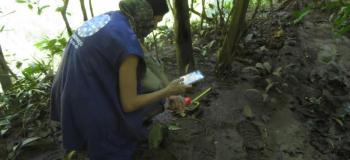 Levantamento e monitoramento de fauna