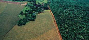 Programa de regularização ambiental tocantins